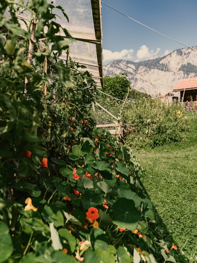 Nomady authentic outdoor camp camping Schweiz St Gallen Kleinberg04